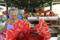 Kea'au Village Market Vendor